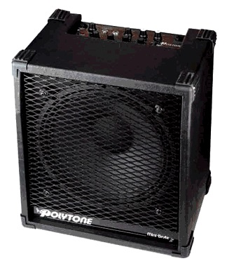 The Most Popular Jazz Guitar Amps