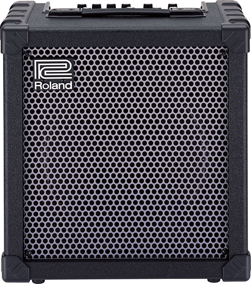 The Most Popular Jazz Guitar Amps (Top 25) - Survey Results