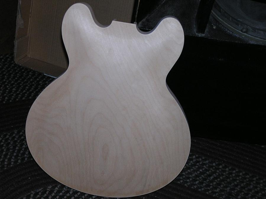 D I Y Semi Hollow Guitar P1010020 Jpg
