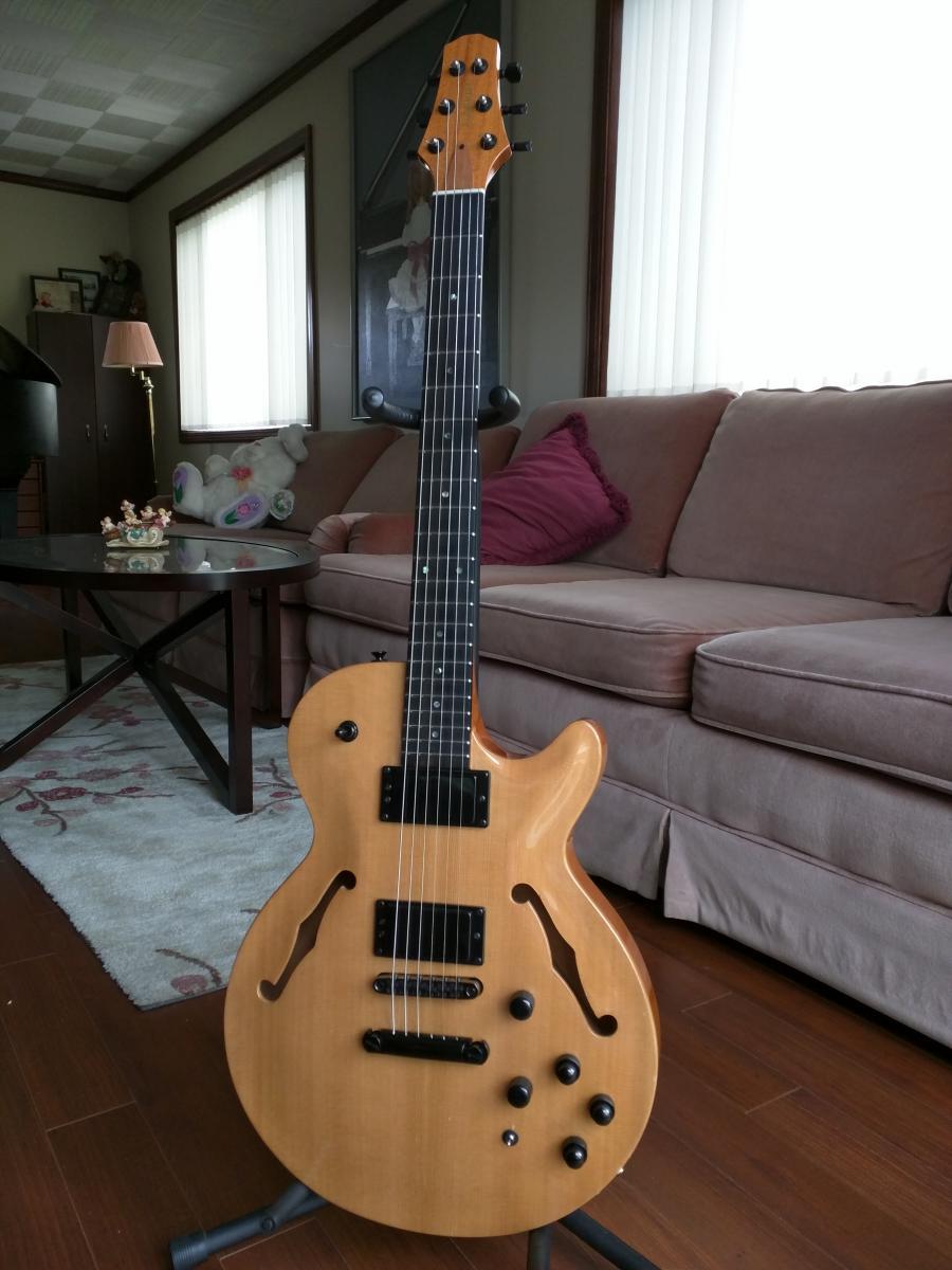 DIY Semi-hollow body guitar-sh575cedar-jpg
