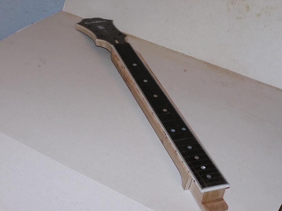 DIY Semi-hollow body guitar-p1010027-jpg