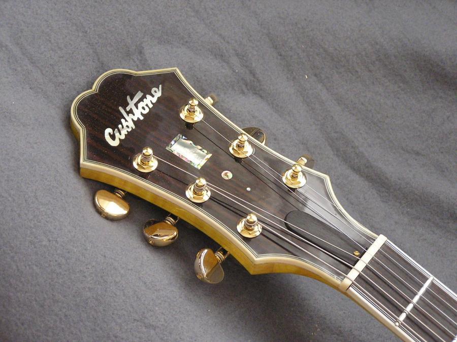 DIY Semi-hollow body guitar-p1010021-jpg