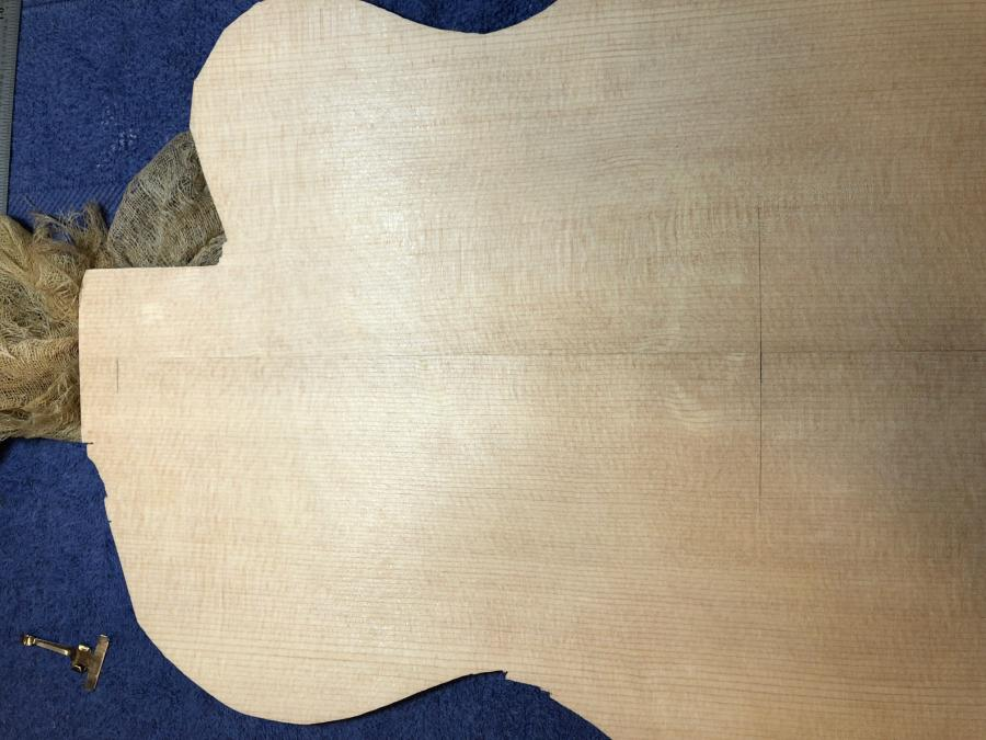 First-timer Archtop Build-img_3123-jpg