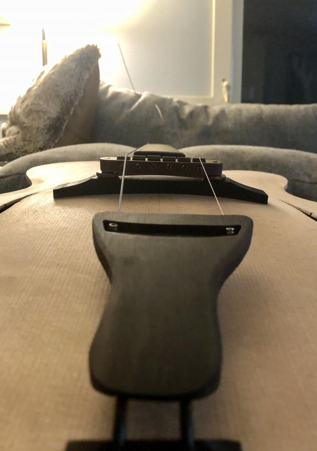 First-timer Archtop Build-e609efa7-d649-4995-8fd6-0828387f5e93-jpg