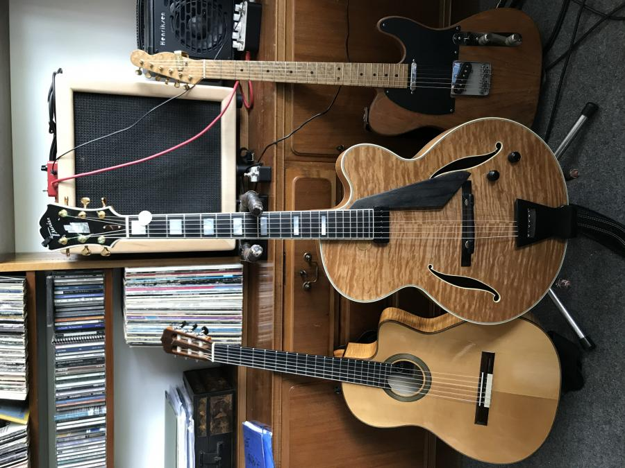 Trenier guitars-img_1980-jpg