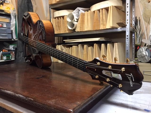 Trenier guitars-e1d0d5eb-3e43-4e9e-a338-830018ac124a-jpeg