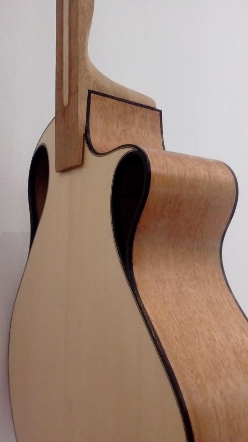 """Celeste"" Nylon string crossover build #1-img_20200913_160150-jpg"