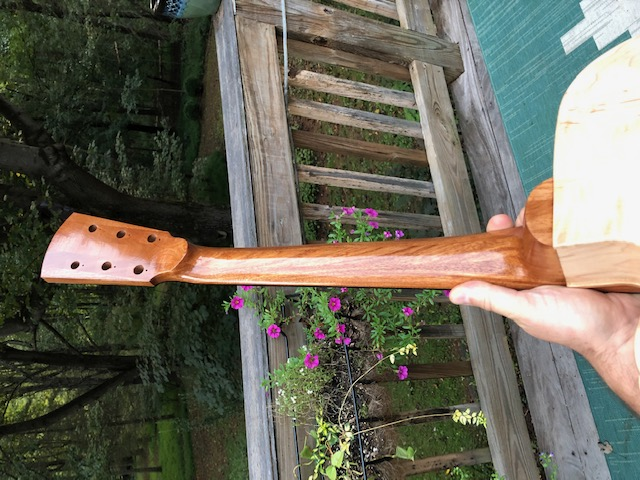 First-timer Archtop Build-img_8090-jpg