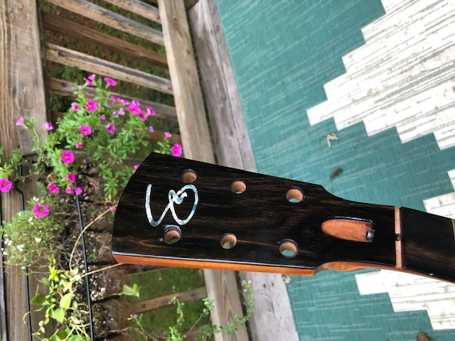 First-timer Archtop Build-img_8091-jpg