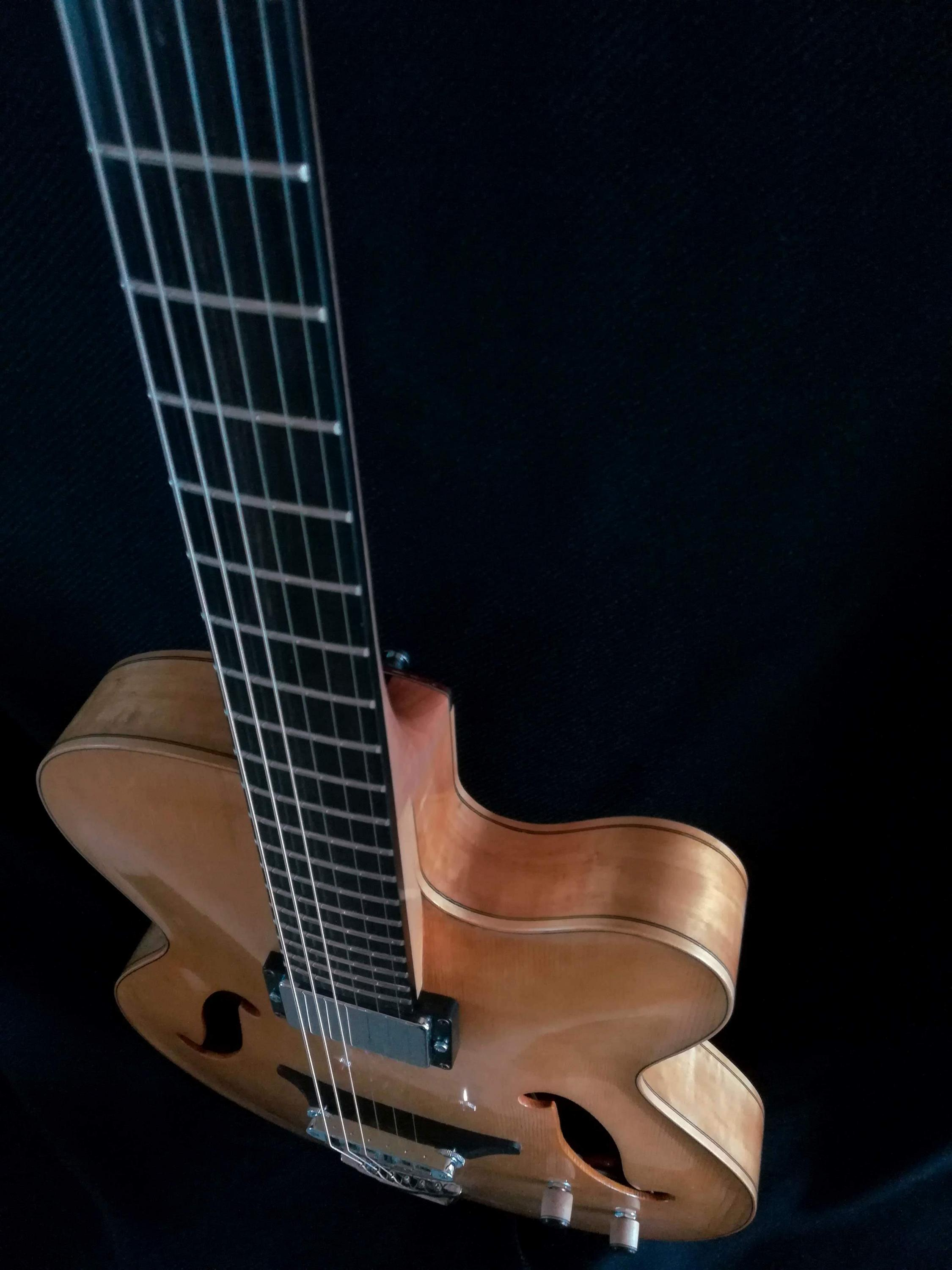 Solid wood Archtop build-5-jpg