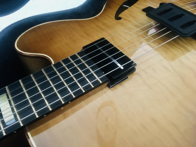 Trenier guitars-img_0677-jpg