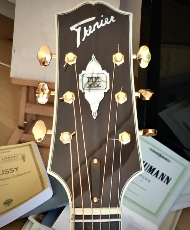 Trenier guitars-eebb6ab9-7ad3-4e07-808d-e639d26fa962-jpg
