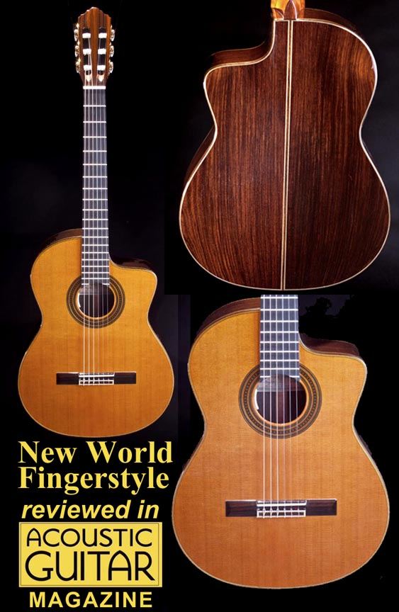 Looking for a hybrid/crossover Guitar-nw-f-jpg