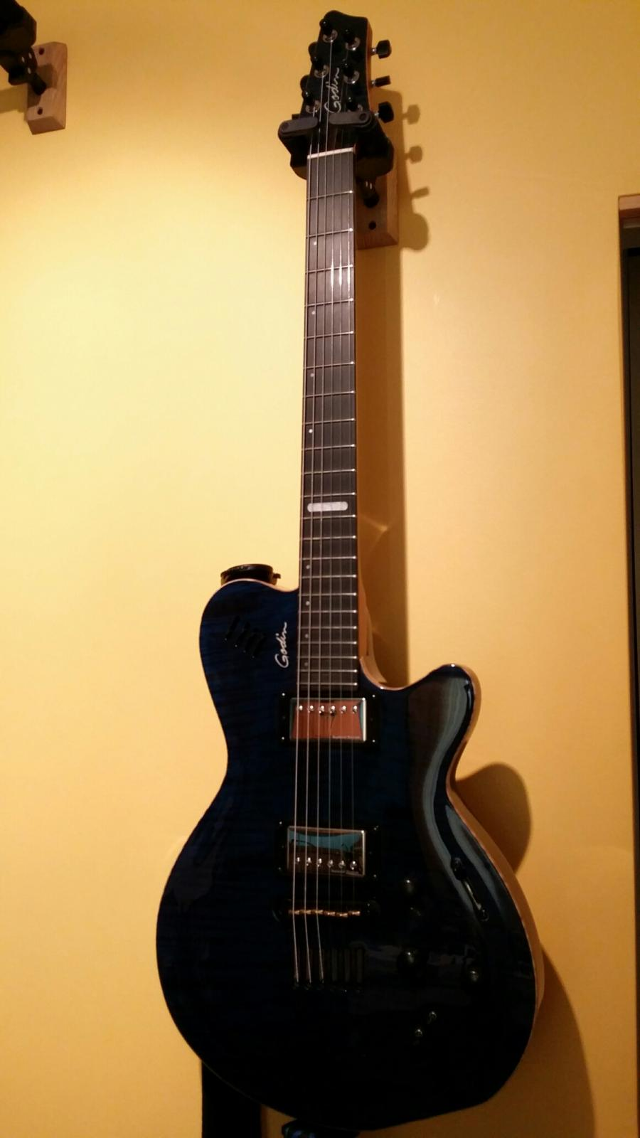If you could have only one electric guitar ...-godin-lgx-sa-2013-jpg