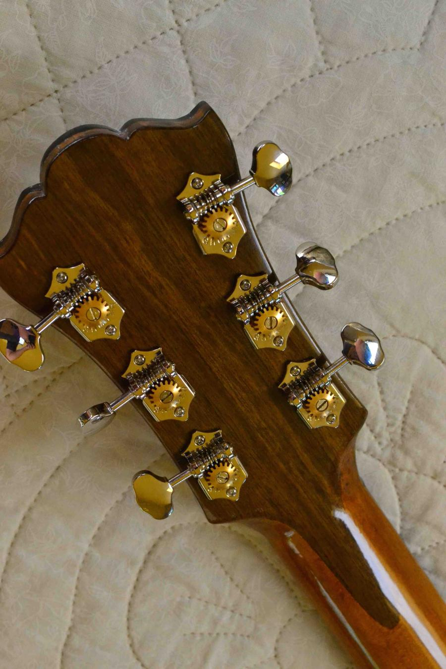 The Hard Way - Building a Jazz Guitar-hs-rear-jpg