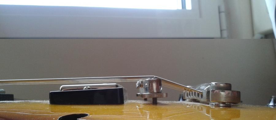 Gibson ES335 sharp notes ?