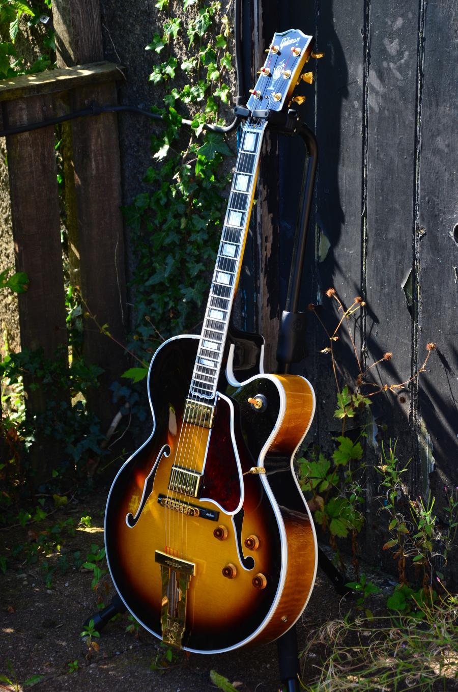 The Venerable Gibson L-5-dsc_7816-jpg