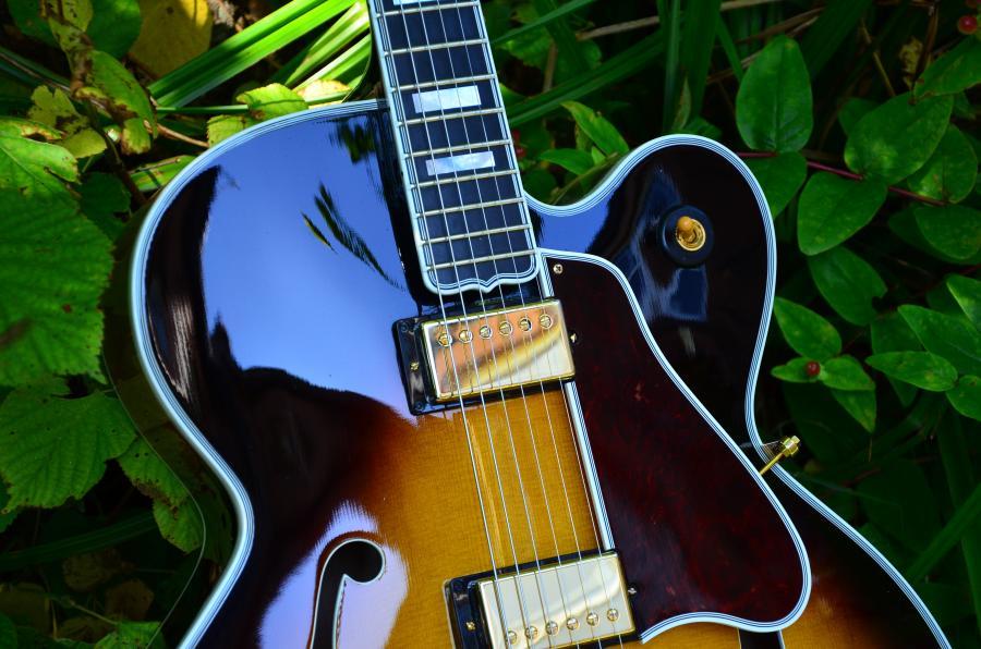 The Venerable Gibson L-5-dsc_7832-jpg