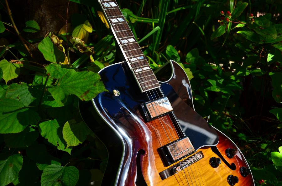 The Venerable Gibson L-5-dsc_7915-jpg