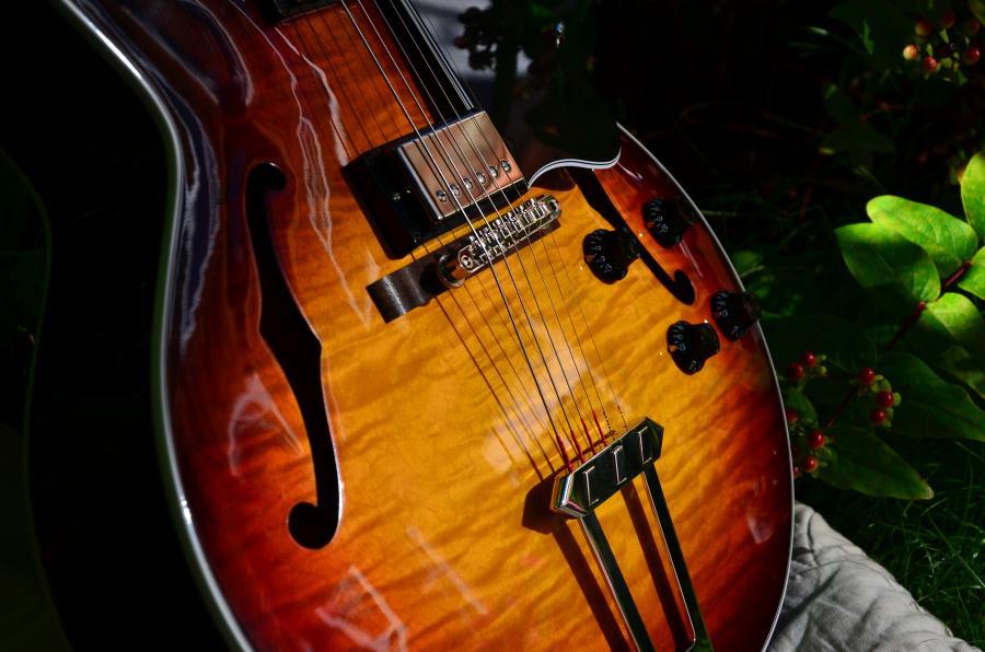 The Venerable Gibson L-5-dsc_7912-jpg