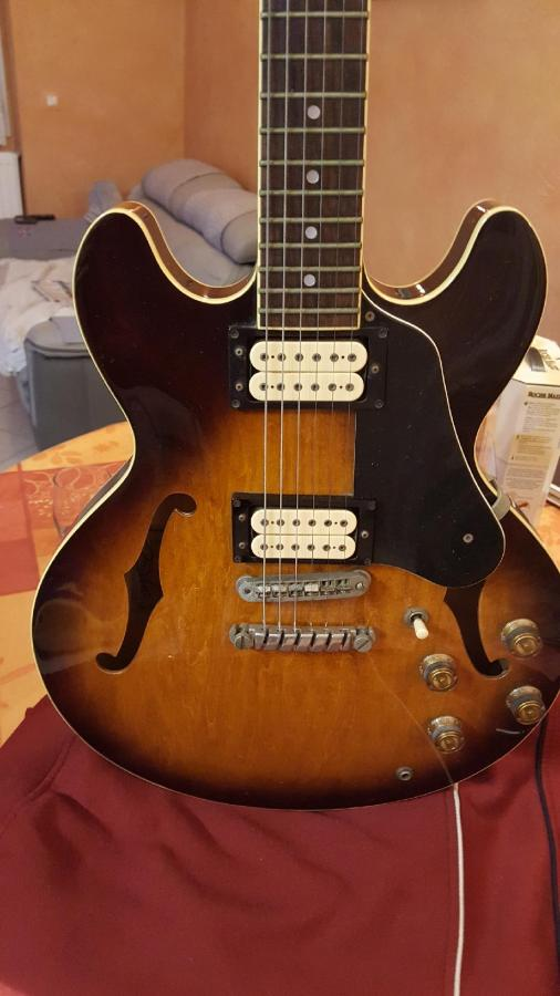 Pickups for a 1980 Ibanez AS50-resized_20171205_193148-jpg