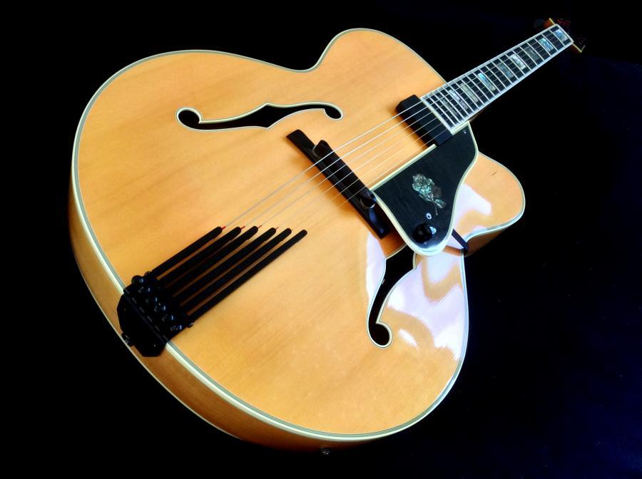 Heritage Guitar Uproar-img_4031-jpg