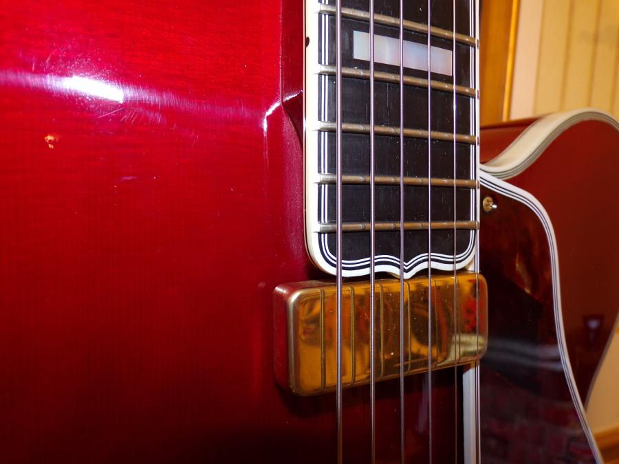 Gibson L-5 finish:  What is the name of it?-100_0249-jpg