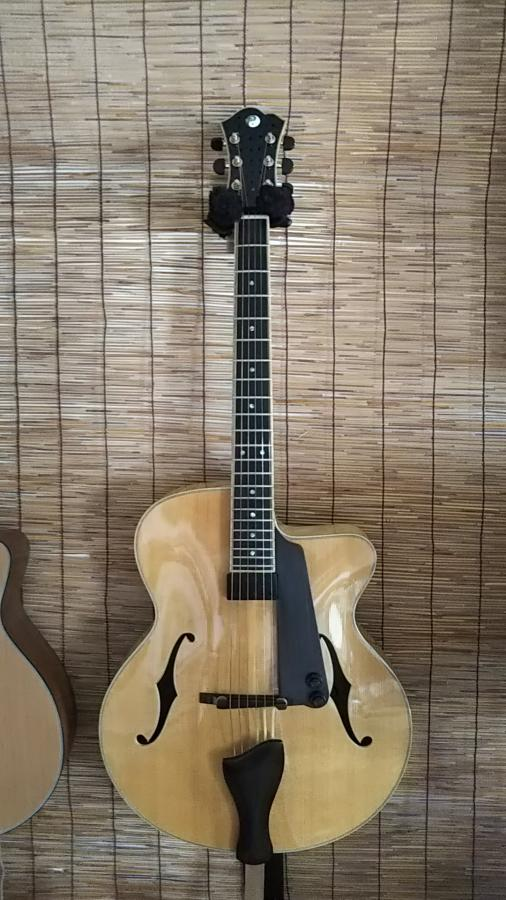 Acoustic + magnetic pickup = pure gold?-dsc_0185-jpg