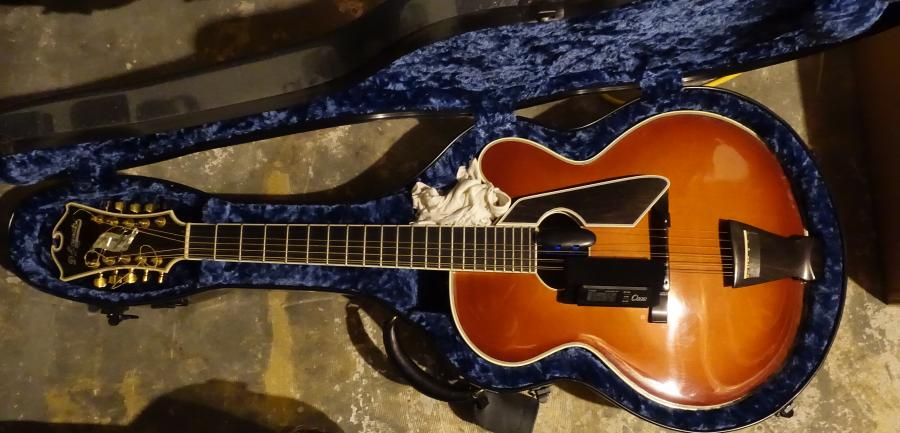 Caring for expensive archtop-guitar-jpg