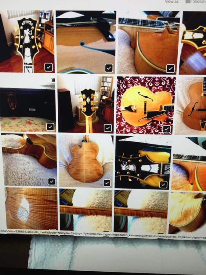 1999 Heritage Golden Eagle with blush-d4586ba1-82a4-4a27-a06c-3a9740364d2f-jpg