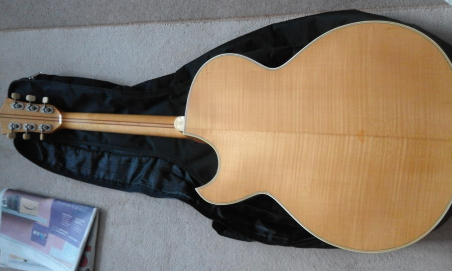 Where are the Hofner full body, (single) florentine cutaway specimens?-20191017_161000-jpg