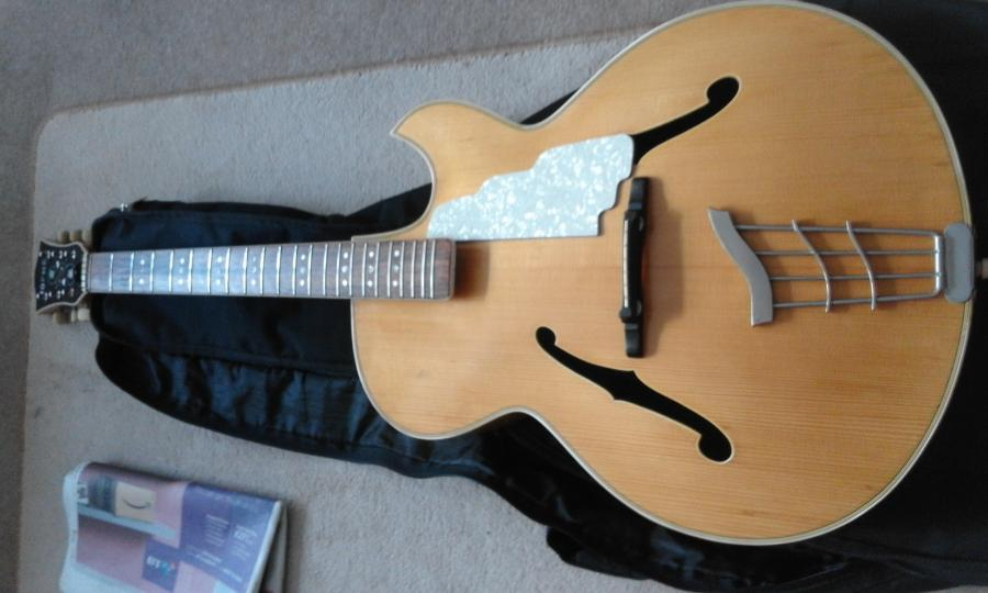 Where are the Hofner full body, (single) florentine cutaway specimens?-20191017_160918-jpg