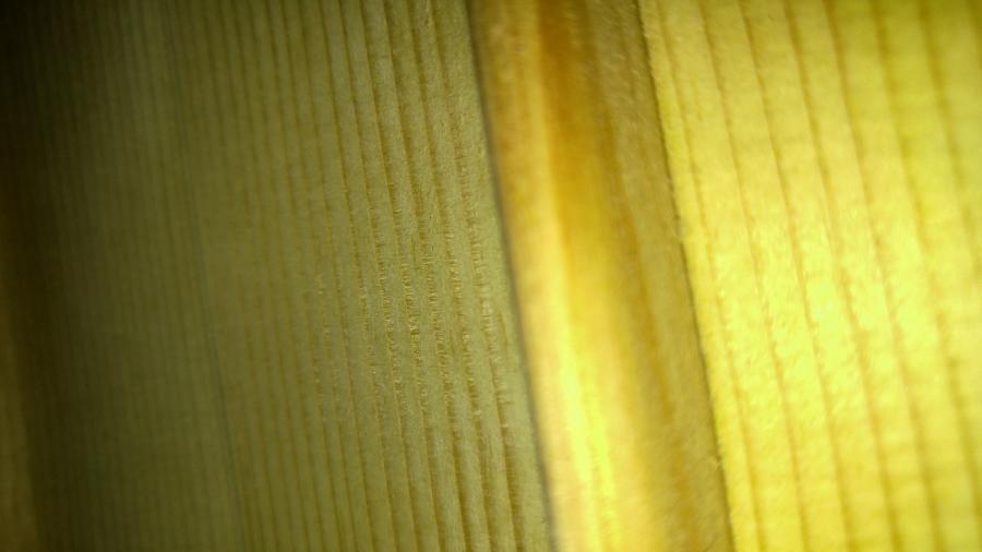 Photo of the inside of eastman El Rey?-0329181956a-jpg