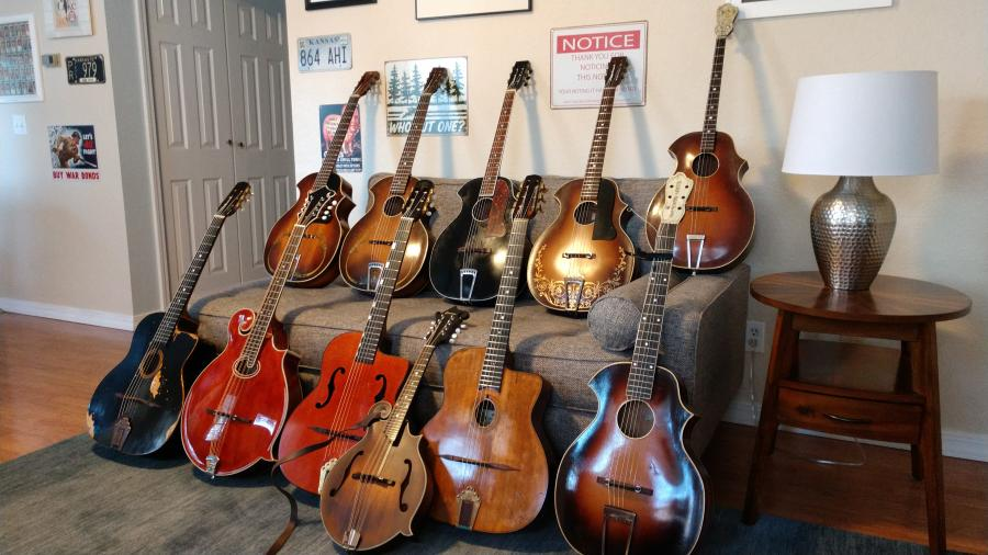 The Current Herd - couch shot-instruments-etc-170-jpg