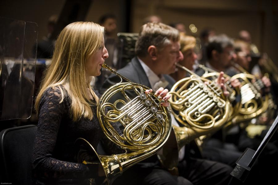 Lefty instruments an anomaly to the guitar?-french_horn-jpg