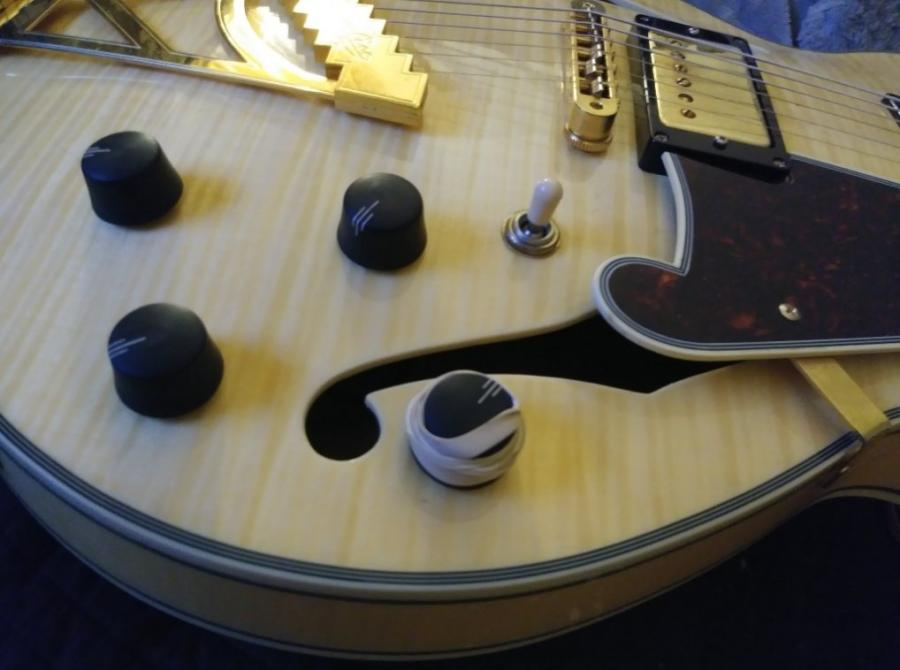 D'Angelico EX SS knobs are so slippery-ex-ss_knobs-jpg
