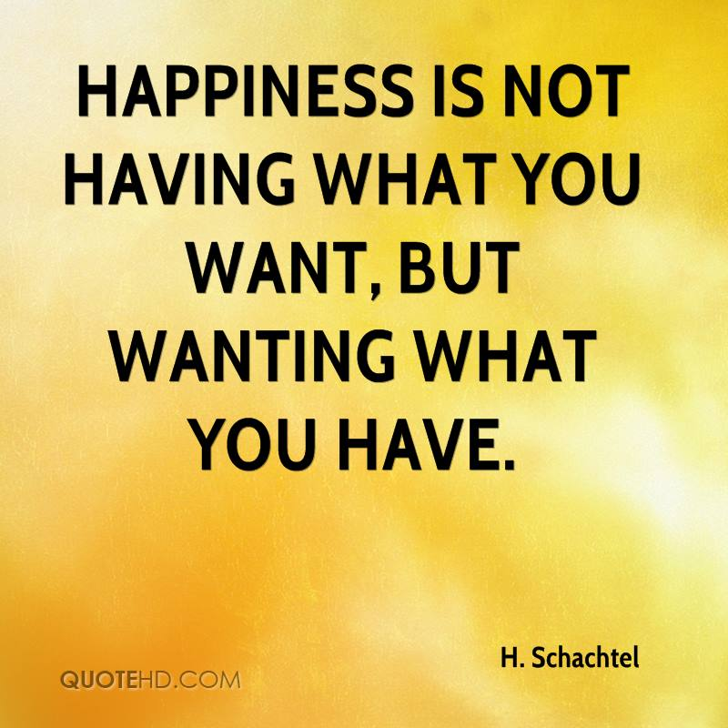 Does NGD cause anxiety for anyone else?-h-schachtel-quote-happiness-not-having-what-you-want-but-wanting-jpg