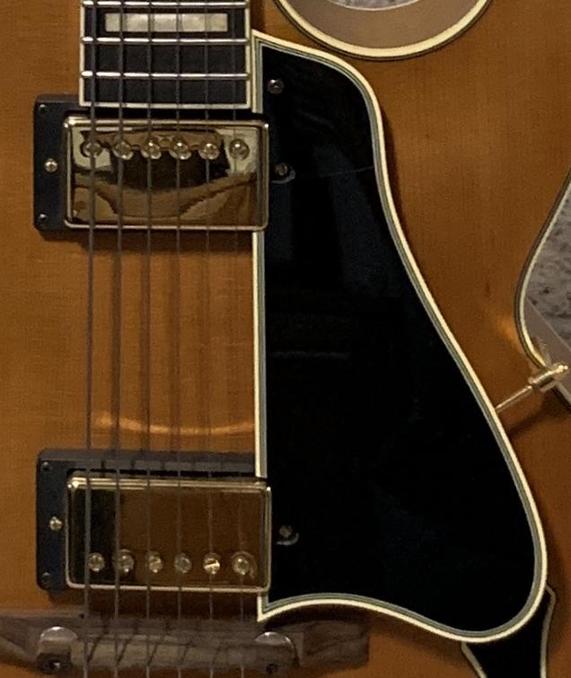 In Search of Pickguard for Gibson ES-775-a481935e-b844-482a-9466-66acafaabdbc-jpeg