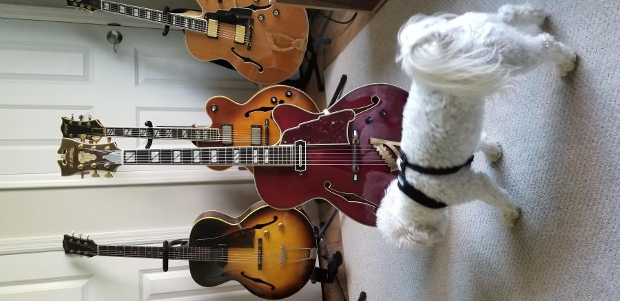 D'angelico EXS-1 with CC pickup......-20200407_083320-jpg