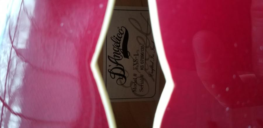 D'angelico EXS-1 with CC pickup......-20200407_103110-jpg