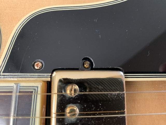 In Search of Pickguard for Gibson ES-775-977cb1d3-fc29-47eb-aca5-90a840385f09-jpeg