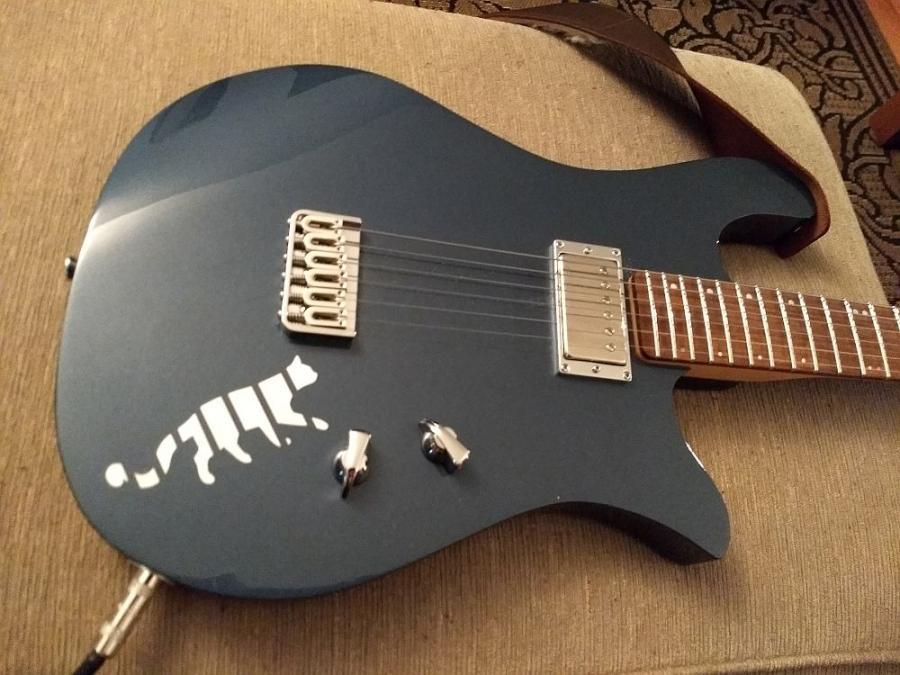 Quarantine Pastime - Post Your #1 Guitar-bluegoosecat1000-jpg