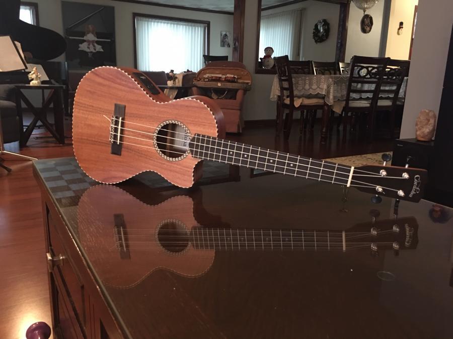 Quarantine Pastime - Post Your #1 Guitar-uke-jpg
