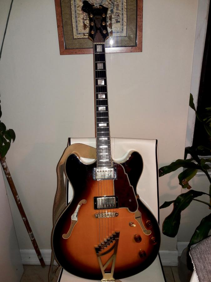 Guitar and Amp of the Day-angelicoexdc-jpg