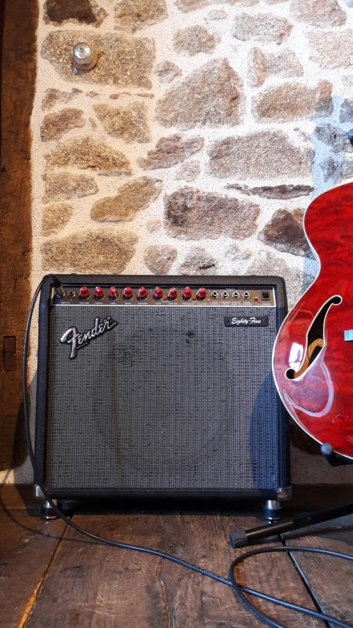 How Many Guitar Amps Do You Own?-f85-jpg