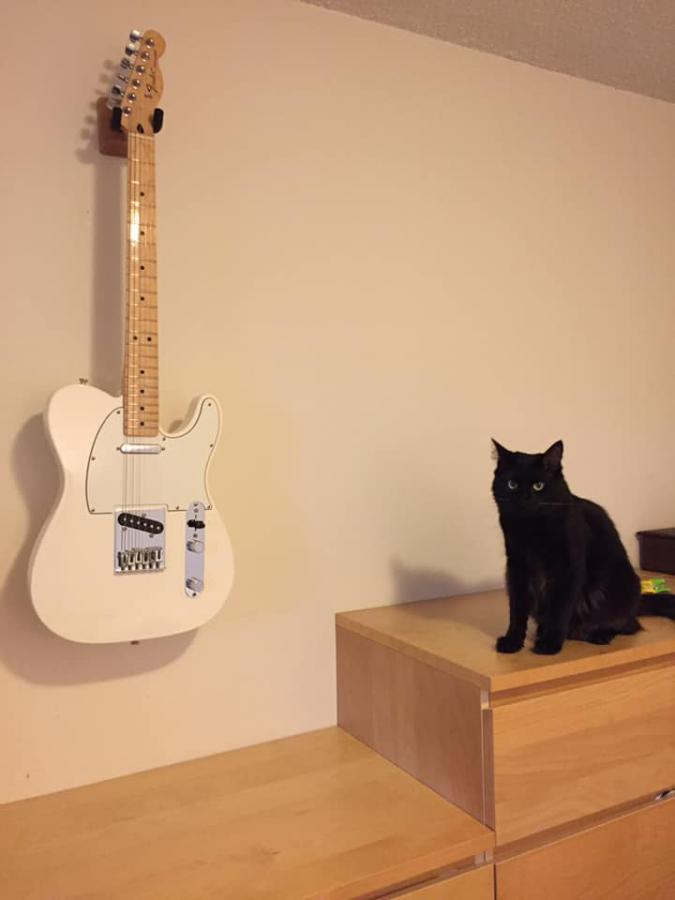 Telecaster Love Thread, No Archtops Allowed-tele-kiki-jpg