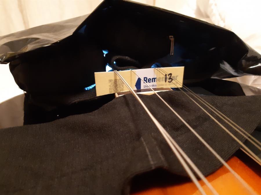 Alden A150 (Gibson ES-125 Clone)-20200608_220121-jpg