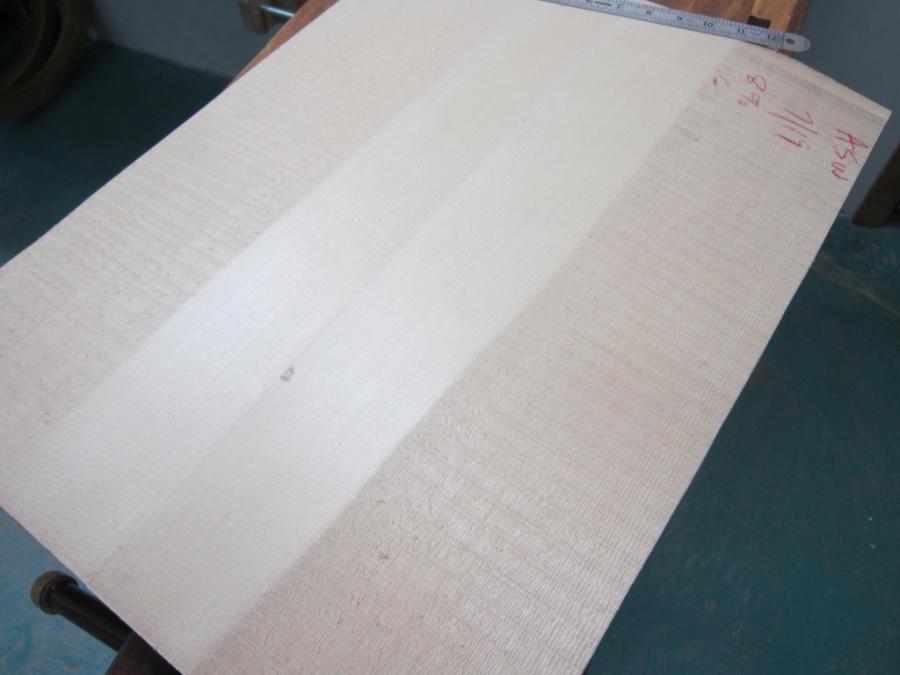 The Campellone Deluxe Silverfoxx Model begins-1e463b8e-3014-4626-950e-f90044400eba-jpg