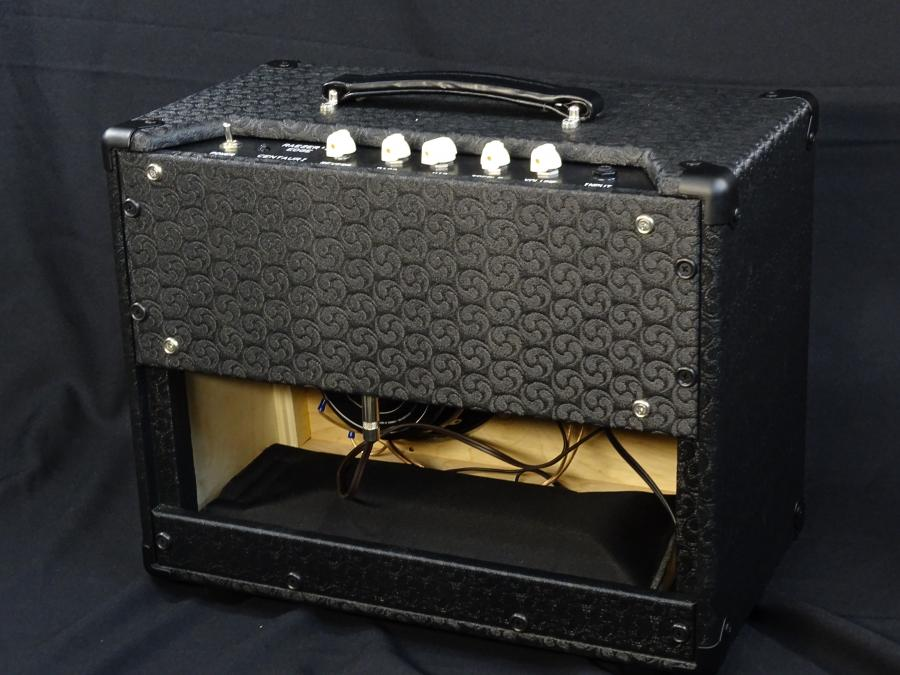 Raezer's Edge Centaur Hybrid Amp-dsc01333-jpg