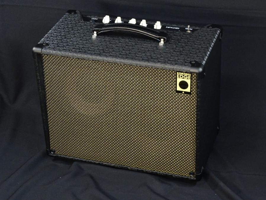 Raezer's Edge Centaur Hybrid Amp-dsc01335-jpg